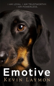 Black dachshund on dark background